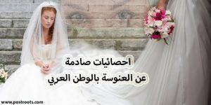 احصائيات صادمة عن العنوسة بالوطن العربي