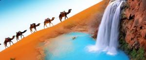 من أين تأتي السعودية بالمياه