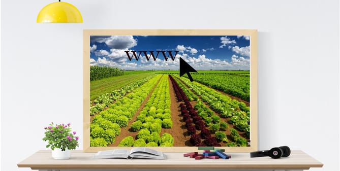 مواقع زراعية مهمة للباحثين بالمجال الزراعي