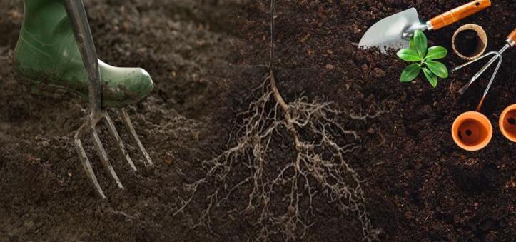 تجهيز و تحضير التربة للزراعة